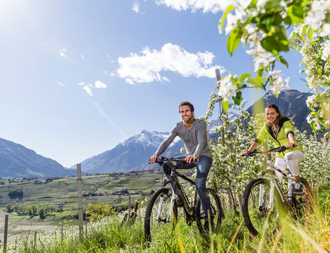 Mountain biking, South Tyrol, holiday in Schenna