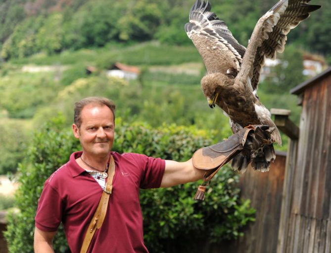 Bird Care Centre Tyrol Castle, Hotel Hohenwart, Italy